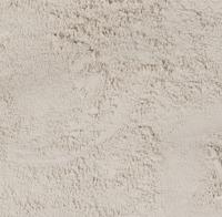 zand zilverzand
